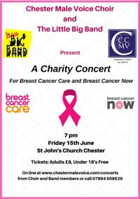 Charity Concert with The Little Big Band